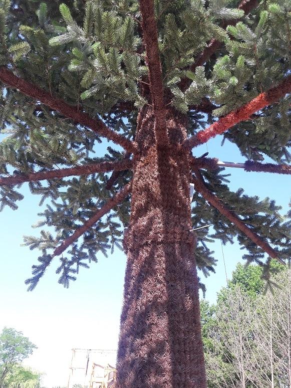 Pine tree extra indoor 1580 cm