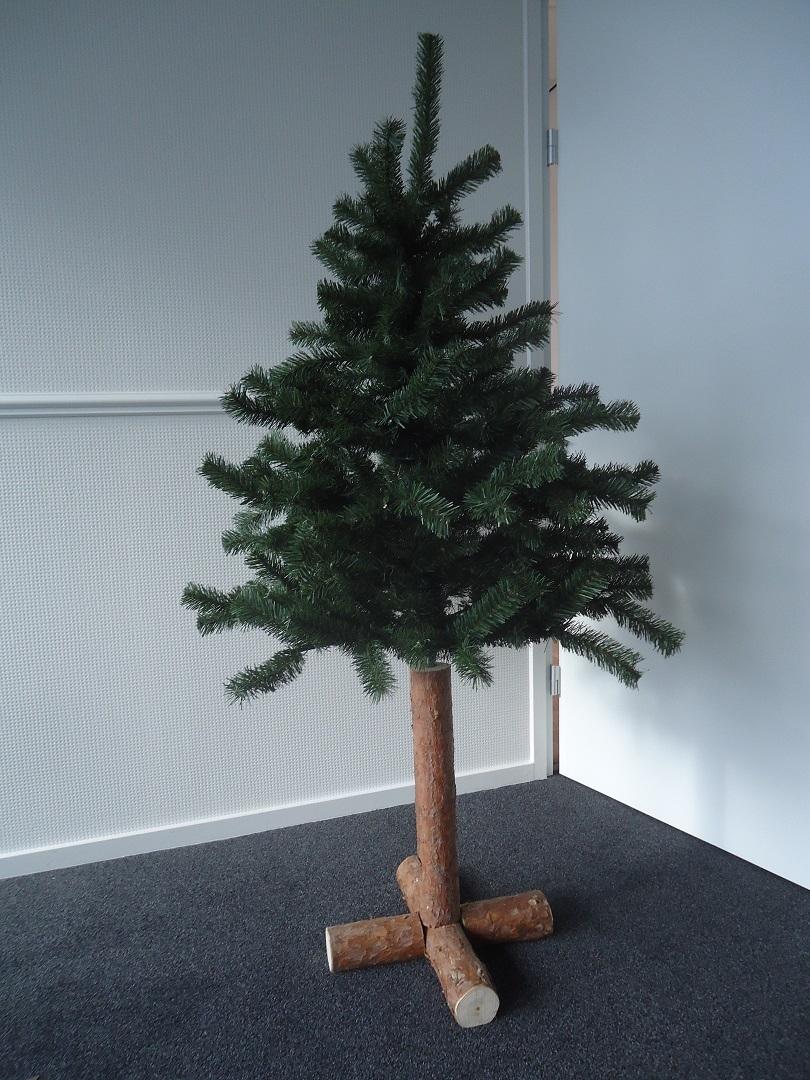Pinus 120, boom 80 cm met stam 40 cm