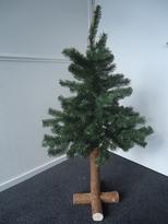 Pinus 150, boom 100 cm met stam 50 cm