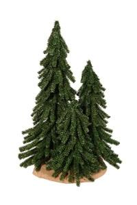 Alpine tree